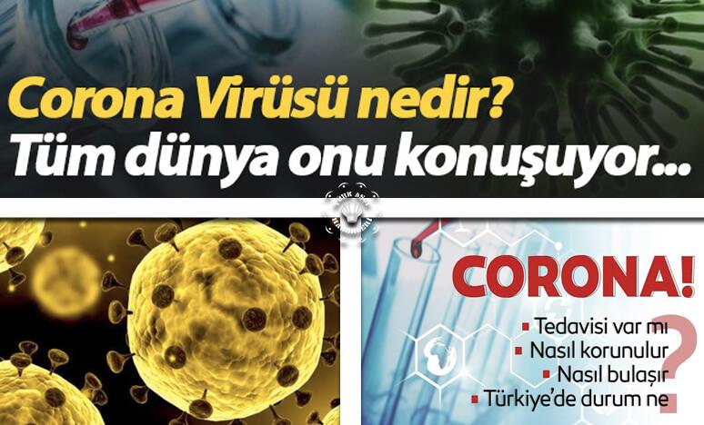 corona virüsü üzüm sirkesi